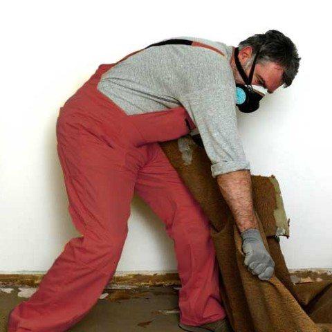 ABT's odor removal service