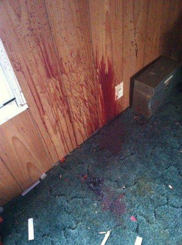 homicide, crime scene sclean up
