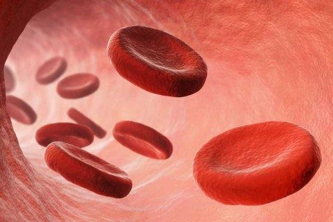 Blood Cleanup-ABT blood and bodily fluid cleanup