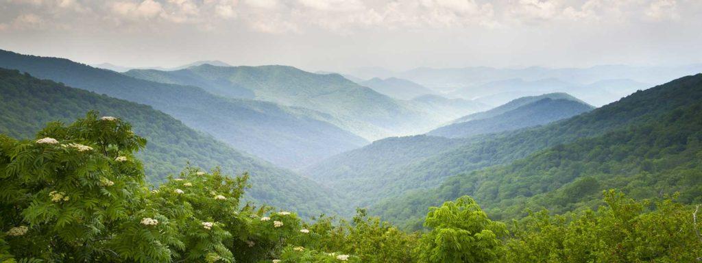 Advanced Bio Treatment North Carolina Service Areas